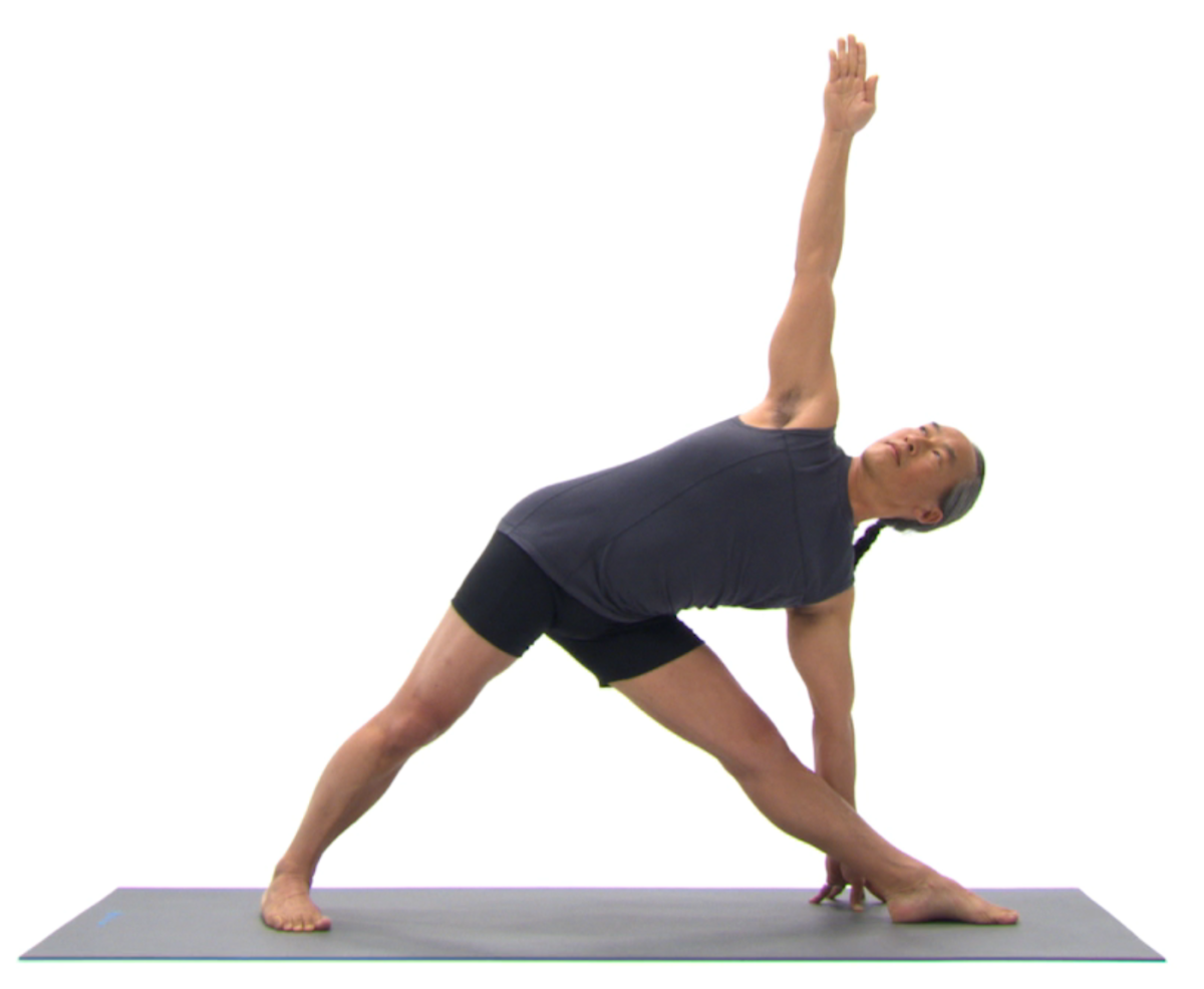 The Difference Between Yoga And Yoga Therapy