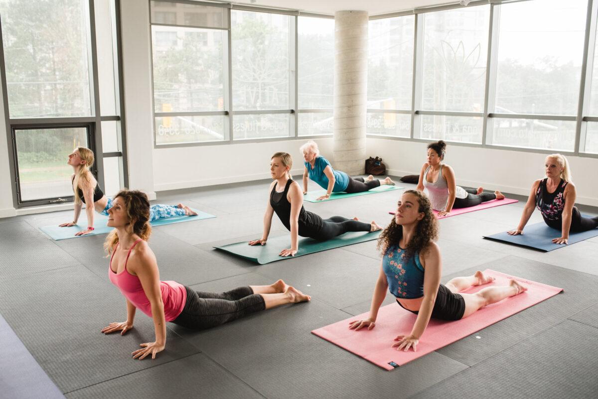 Things You Need to Understand About Vinyasa Yoga Teacher Training in Rishikesh